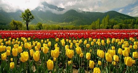 Kashmir Heaven on Earth -6