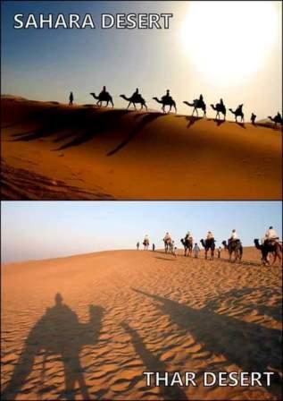 Thar-Desert-1