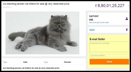 People try to sell on OLX Funny - 6