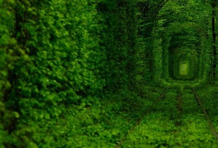 Tunnel of Love - 2