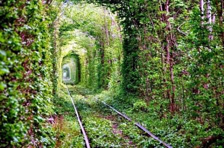 Tunnel-of-Love-8