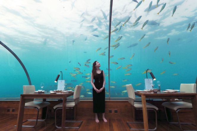 First Underwater Restaurant Ithaa (5)