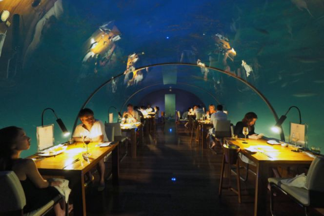 First Underwater Restaurant Ithaa (9)