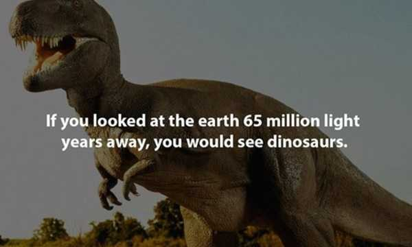 Interesting-Facts-17