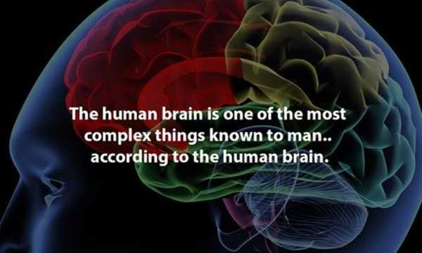 Interesting-Facts-9