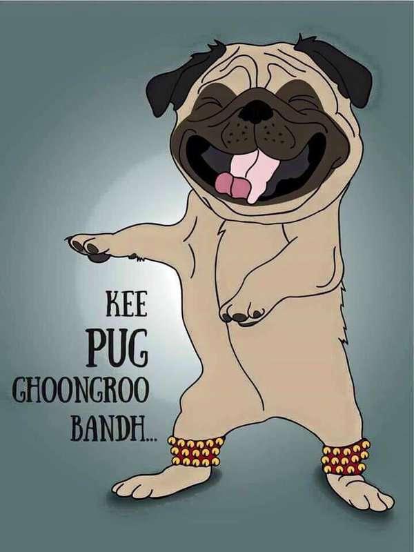 Pug Meme (5)