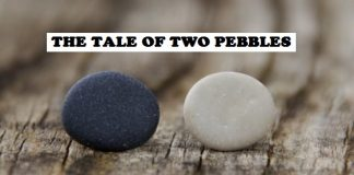 Awakening Story - The Tale of Two Pebbles