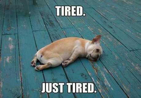 Sunday Tired meme