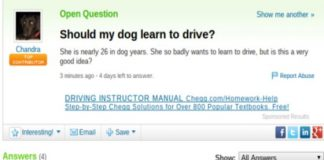 Funny Yahoo Questions Fail 256