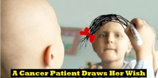 Heart Touching Photos