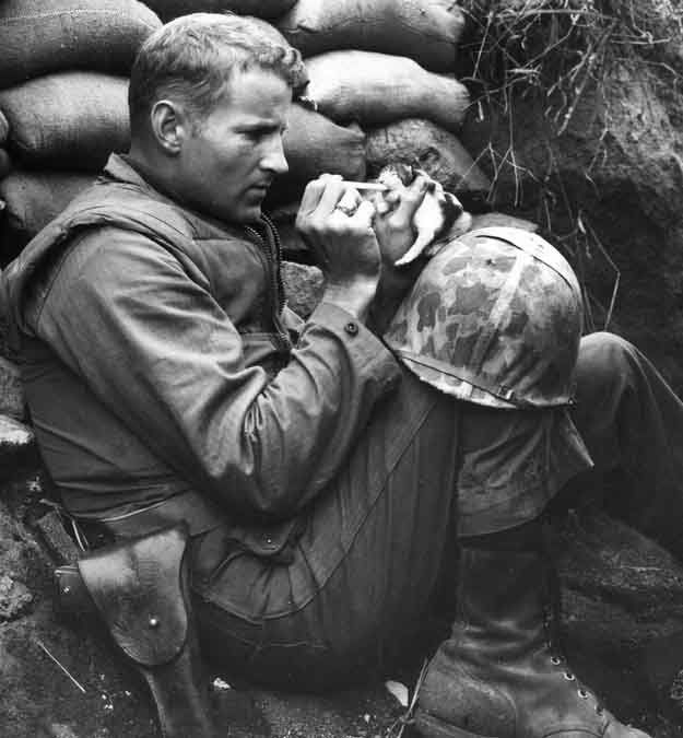heart-touching-photos-soldier-feedin-kitten