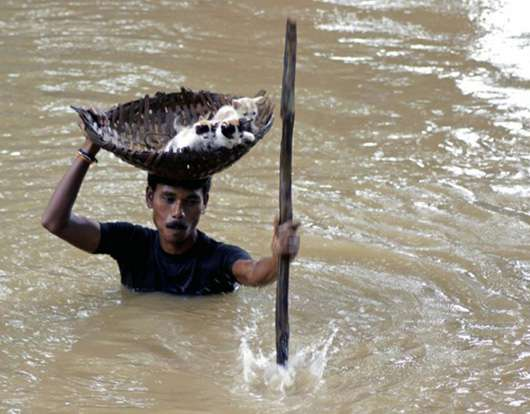 restore faith in humanity (12)