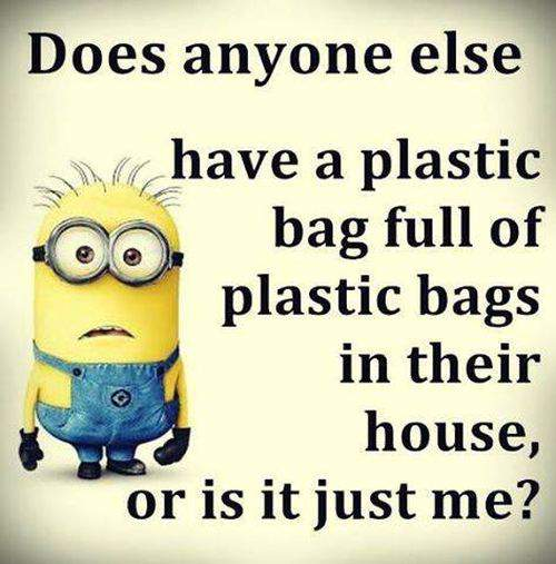 Funny-Minion-Quotes-7
