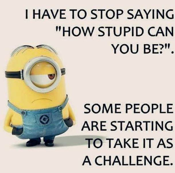 Best Stupid People Quotes -1