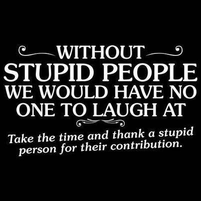 Best Stupid People Quotes - 2