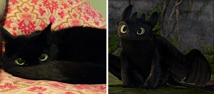Cartoon-Look-Alikes-Toothless