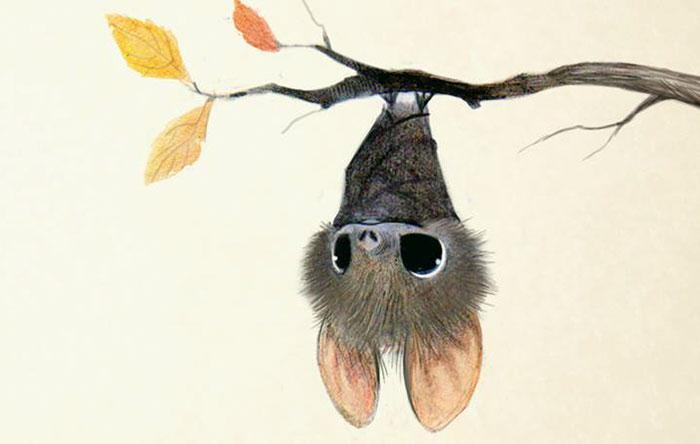 Cute-Animal-Illustrations-Bat-Syndey-Hanson