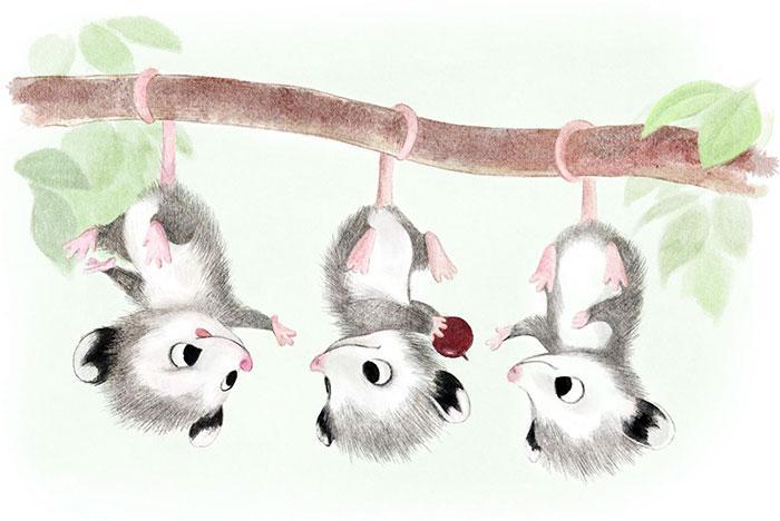 Cute-Animal-Illustrations-Forest-Syndey-Hanson