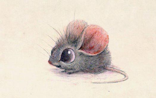 Cute-Animal-Illustrations-Mouse-Syndey-Hanson