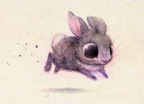 Cute-Animal-Illustrations-Rabbit-Syndey-Hanson