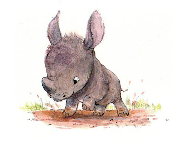 Cute-Animal-Illustrations-Wild-Syndey-Hanson