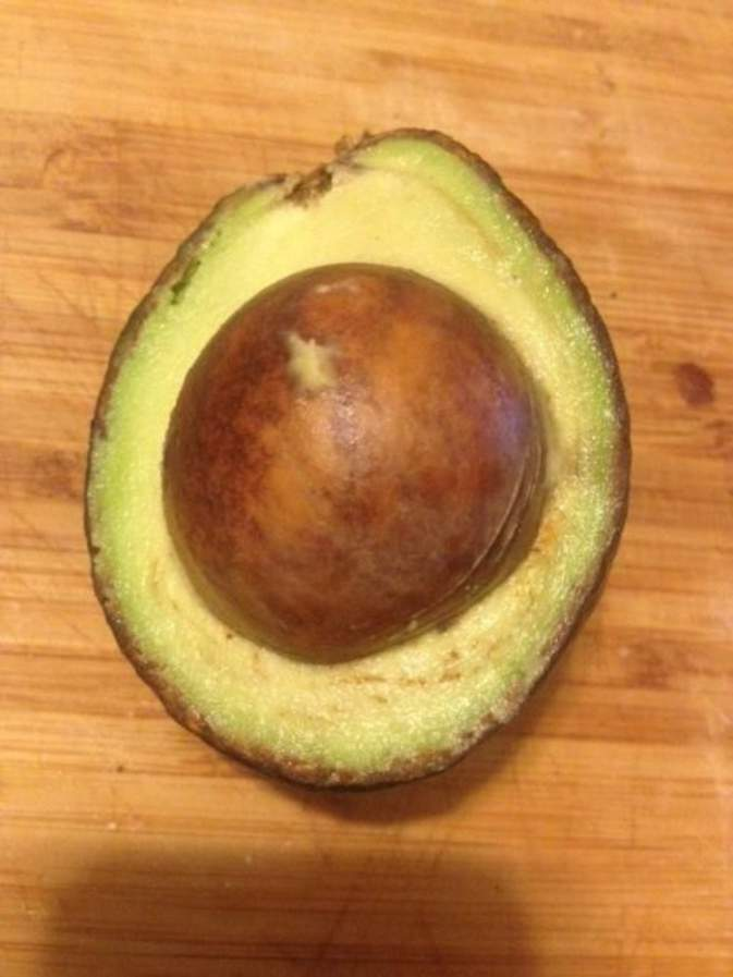 disappointed-with-life-funny-avocado