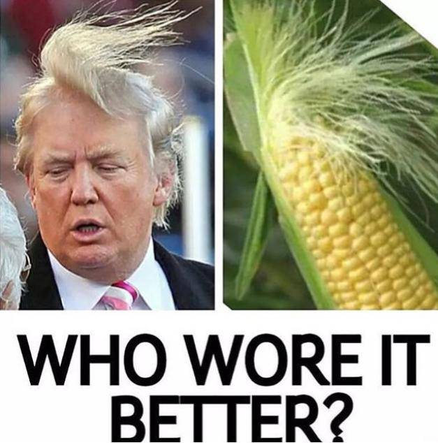 Donald-Trump-Memes-funny-Who-Wore-it-better