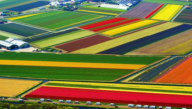 Most Amazing Places In The World Tulip Fields Netherlands
