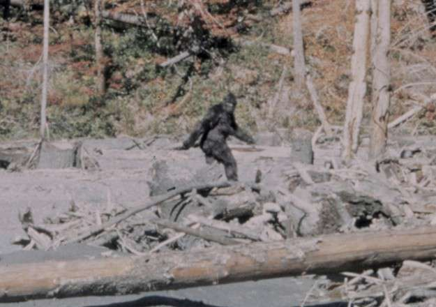 top-10-unsolved-mysteries-of-the-world-big-foot