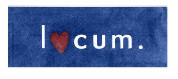 funny-logos-company-organisation-6