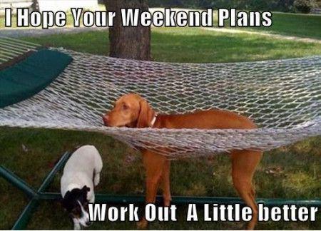 funny-weekend-memes-11