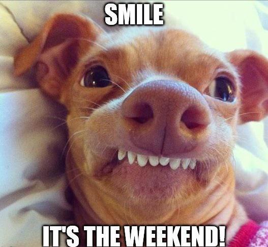 funny-weekend-memes-8