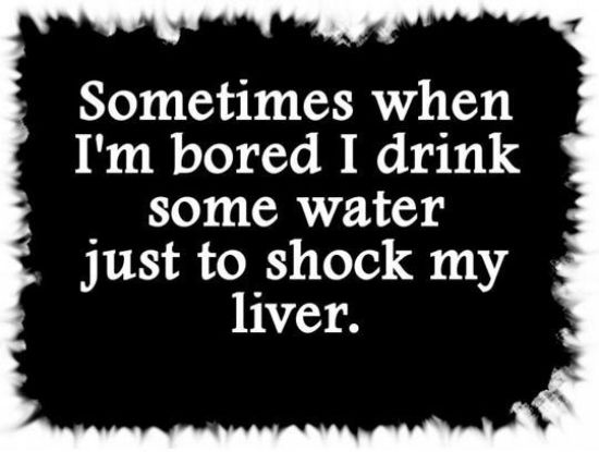 Quotes About Alcohol Stunning 10 Funny Drinking Quotes That Every Alcohol Lover Will Love