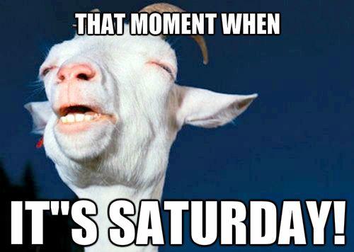 Funny-Saturday-Memes-7