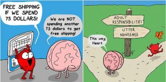 Difference Between Heart And Brain
