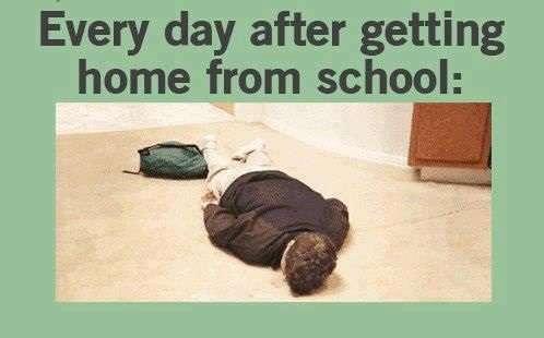 Funny-School-Memes-7