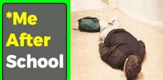 Funny School Memes