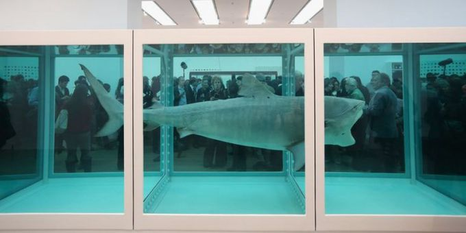 Dead-Shark-Art-Piece-12-Million-USD