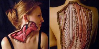 Realistic Body Paintings
