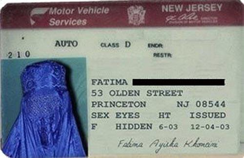 Bizarre-ID-Cards-11