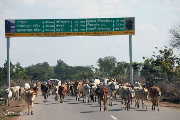 Chhattisgarh-India