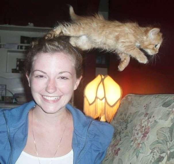 Hilarious-Cat-Photobombs-5