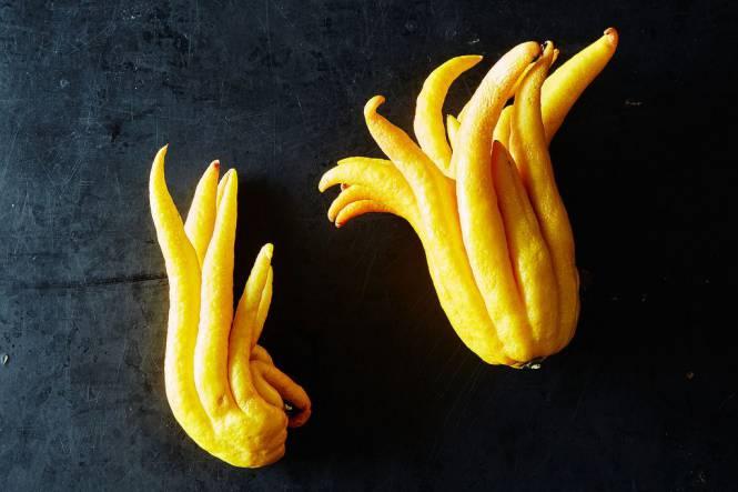 Rare-Exotic-Fruit-Buddha's-hand