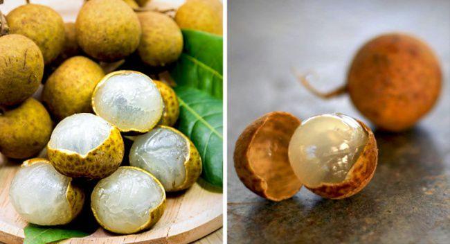 Rare-Exotic-Fruit-Longan