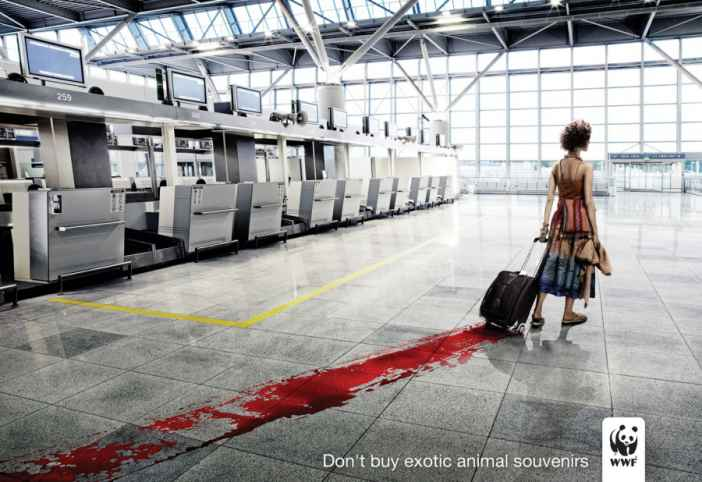 Environmental-Campaign-Ads-1