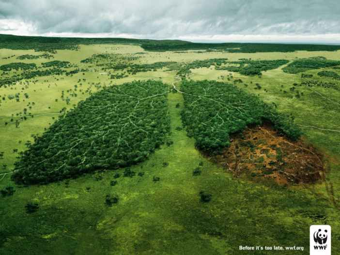Environmental-Campaign-Ads-11