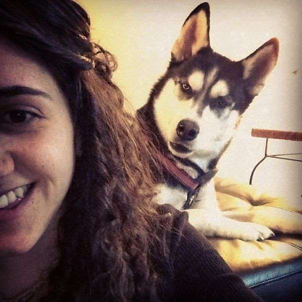 Funniest-Dog-Photobombs-2