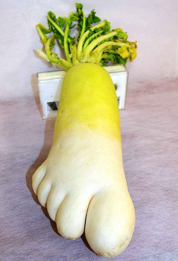 Oddly-Shaped-Fruits-Vegetables-2