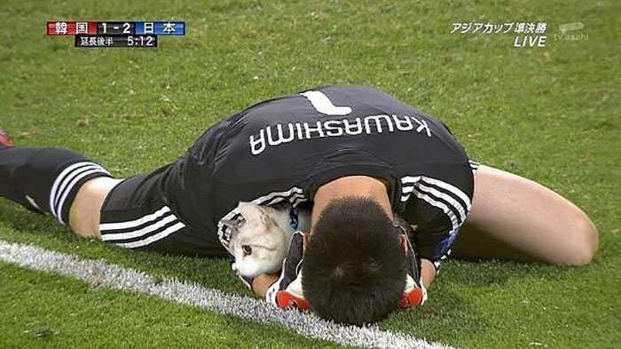Photoshopping-Cats-into-Football-2